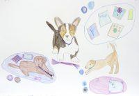 Buntstiftzeichnung - Schülerarbeit - Foto: © Katharina Hansen-Gluschitz