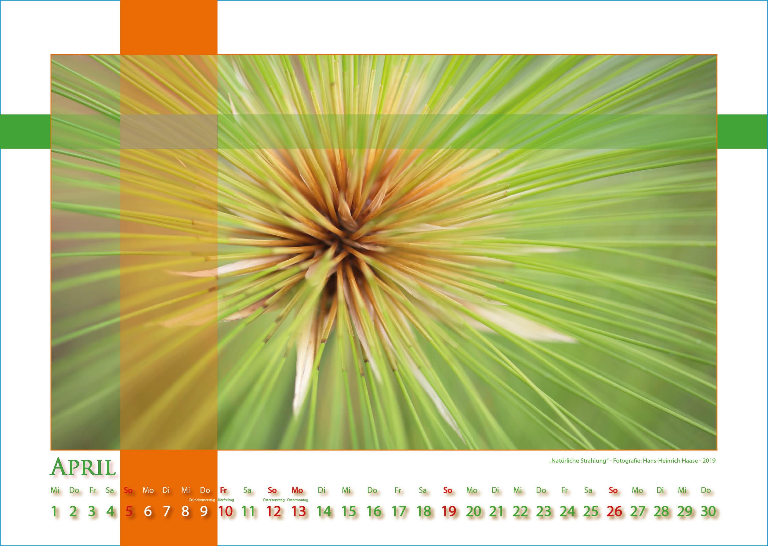 Natürliche Strahlung - Strukturen - Kalender 2020 © Katharina Hansen-Gluschitz