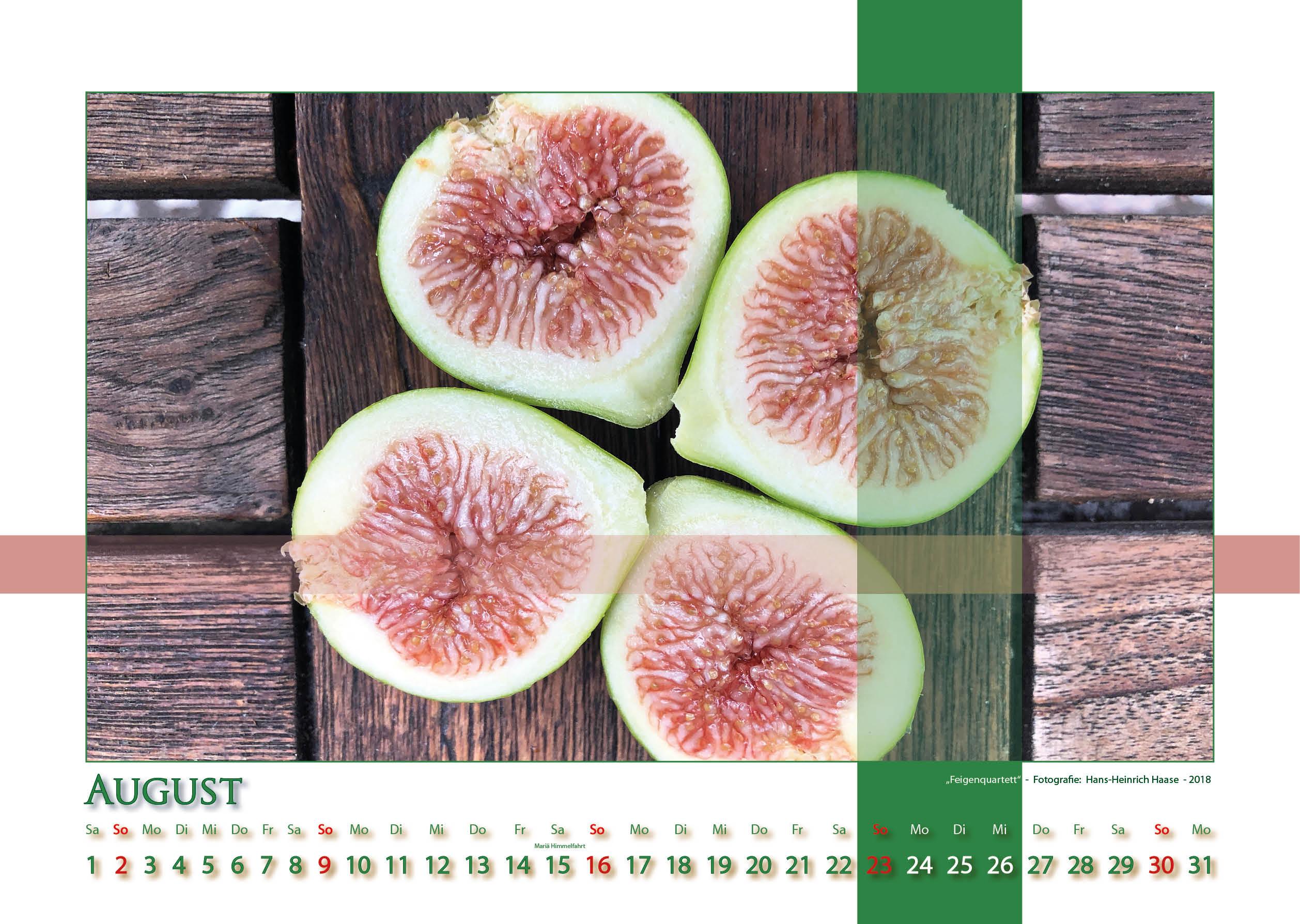Feigenquartett - Strukturen - Kalender 2020 © Katharina Hansen-Gluschitz